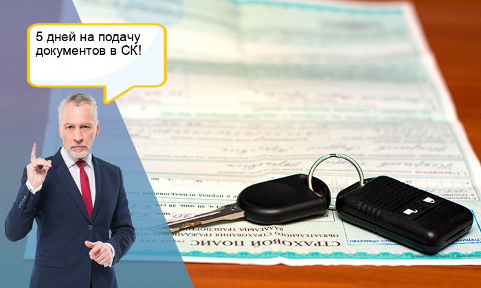 Перечень документов для страховой при дтп осаго